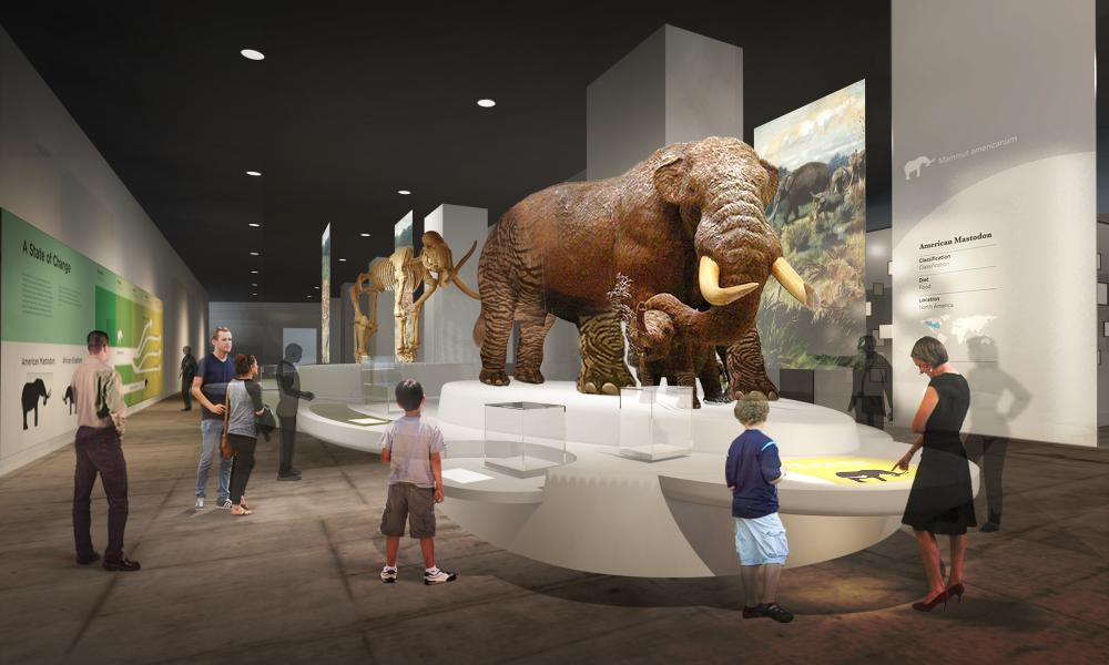 Museum Renovation | The New York State Museum