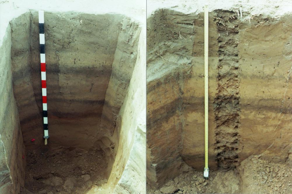 How is radiocarbon dating used in archaeology