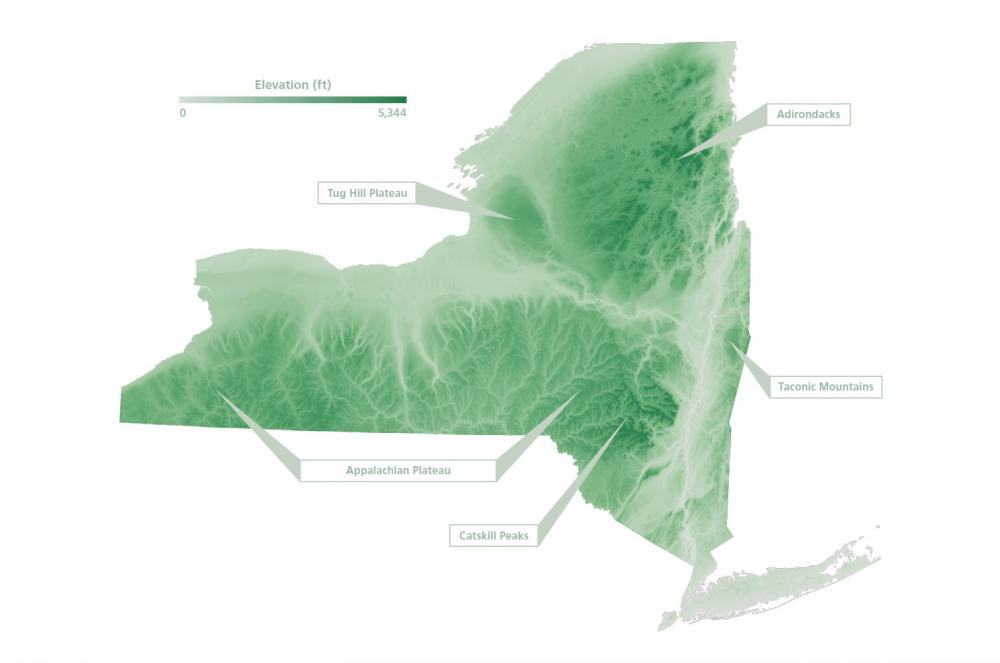 Map of Evergreen Forests in New York