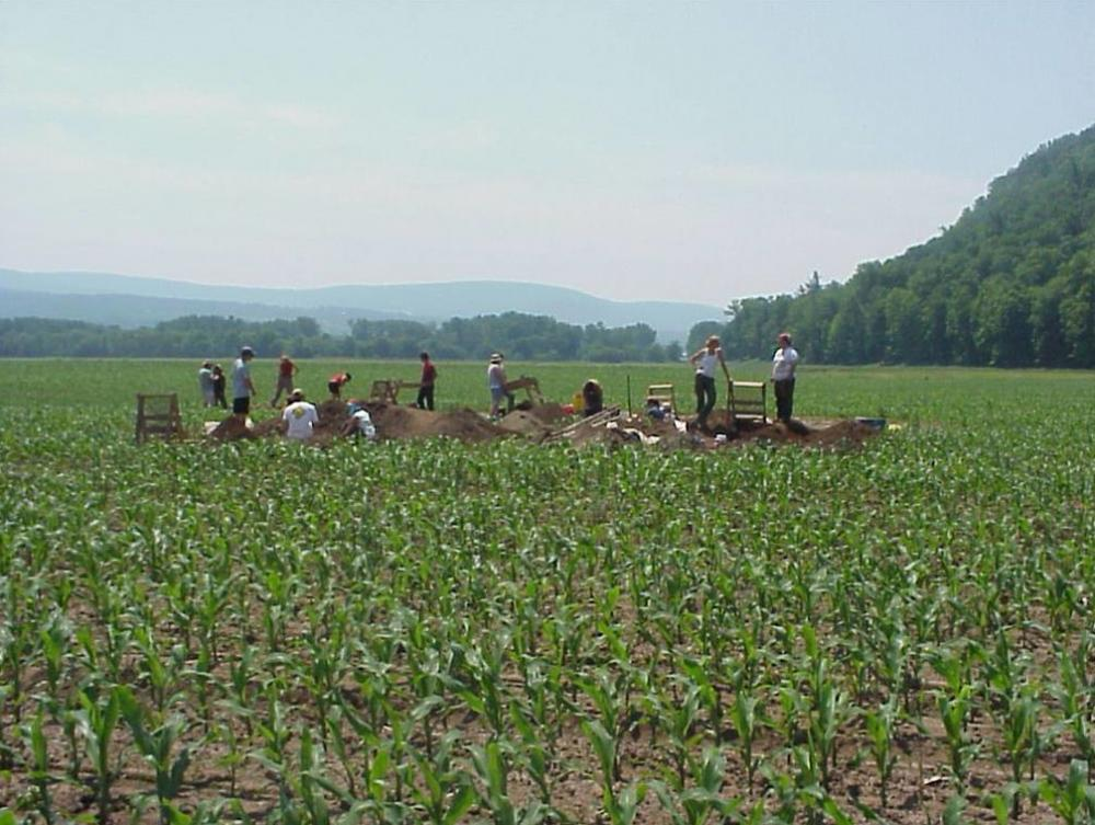 people doing archaeology in field