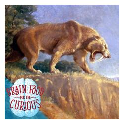 Smilodon - Sabre-Tooth Cat