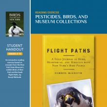 Pesticides, Birds, And Museum Collections - Student Guide