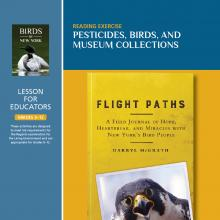 Pesticides, Birds, And Museum Collections - Teacher Guide