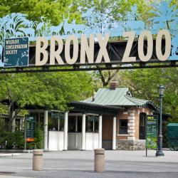 The Bronx Zoo - Entrance