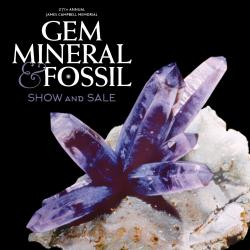 Gem and Mineral Show 2020
