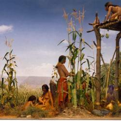 native peoples 3 sisters diorama