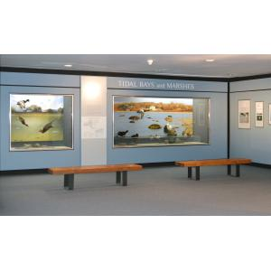 Tidal Bays and Marshes Exhibit
