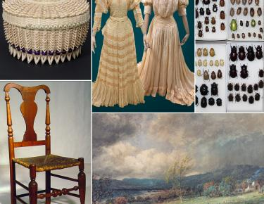 Images from various NYSM collections