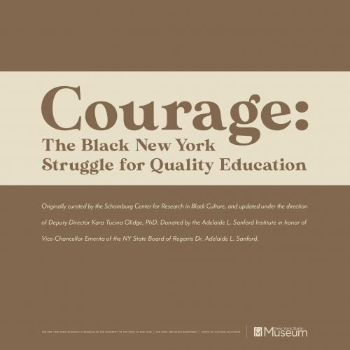 Courage: The Black New York Struggle for Quality Education