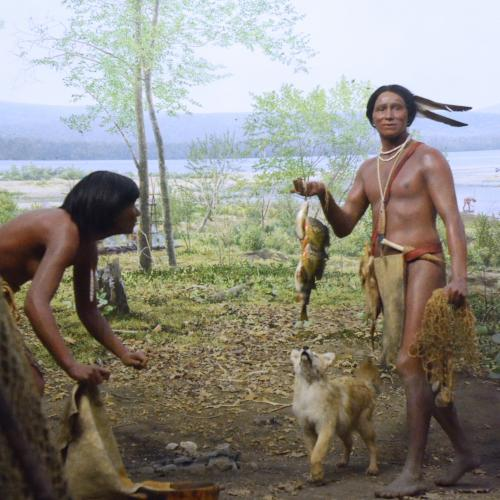 Native Peoples Diorama
