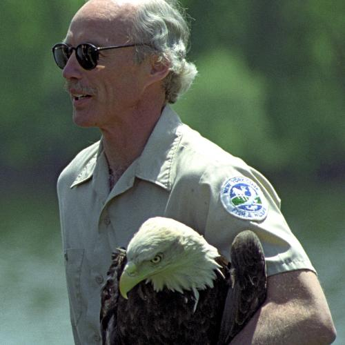 Peter Nye with a Bald Eagle