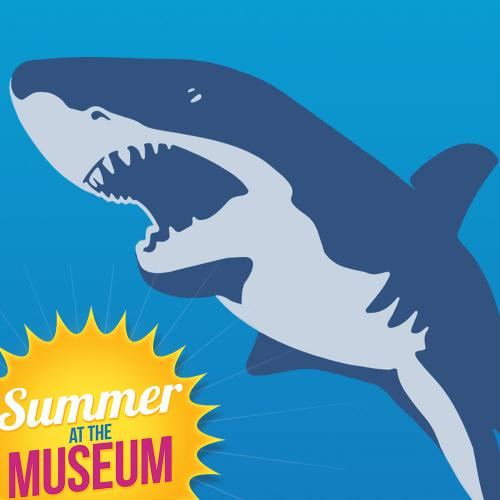 Summer Shark Week