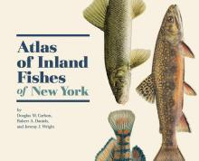 Fish Atlas