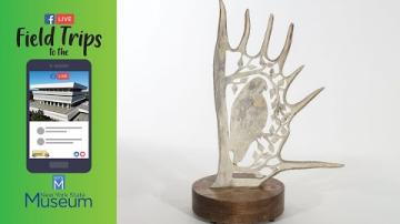 Field Trip to the NYSM: Artist interview - Hayden Haynes on the Art of Antler Carving