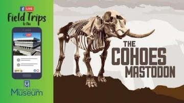Field Trip to the NYSM: A Closer Look at the Cohoes Mastodon
