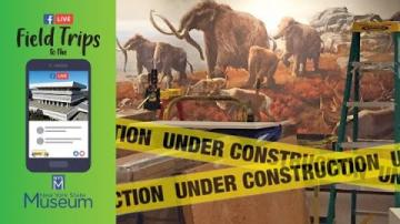 Field Trip to the NYSM: The Making of the Ice Ages Exhibit