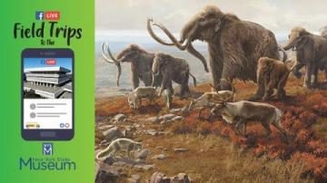 Field Trip to the NYSM: The Ice Ages Exhibit