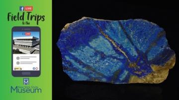 Field Trip to the NYSM: Gems and Minerals Rock!